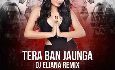 TERA BAN JAUNGA (REMIX) - DJ ELIANA
