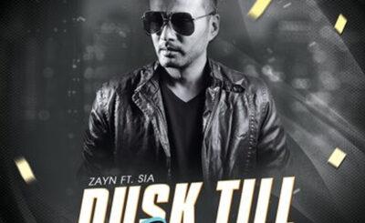 Dusk Till Dawn (Remix) - DJ Taral